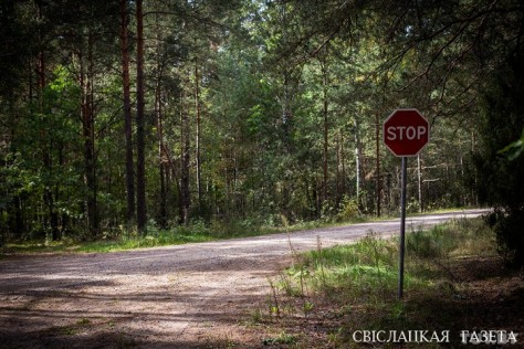 """We do not go to the forest without a reason"". Life in Novy Dvor a year after Maxim Markhalyuk's disappearance"